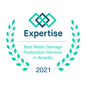 Expertise Award 2021