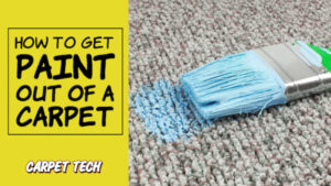 Blue paint stain on a carpet with paintbrush