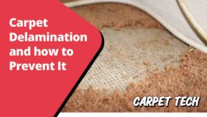 Carpet delamination and how to prevent it