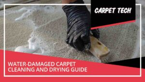 Cleaning of water damaged carpet